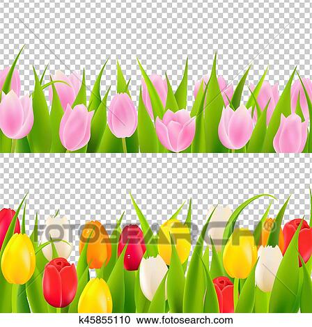 Tulip Border With Transparent Background Clipart ... Tulips Border Clipart