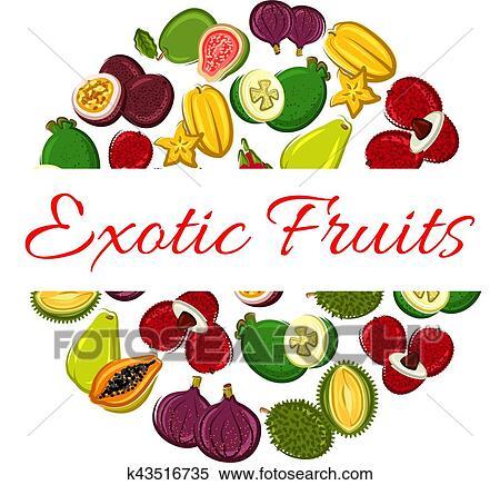 Clipart frutta esotica cerchio manifesto per cibo for Clipart frutta