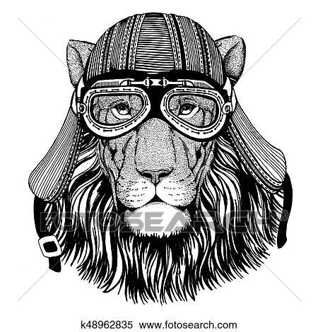 Banque D Illustrations Sauvage Lion Fauve Porter Motard