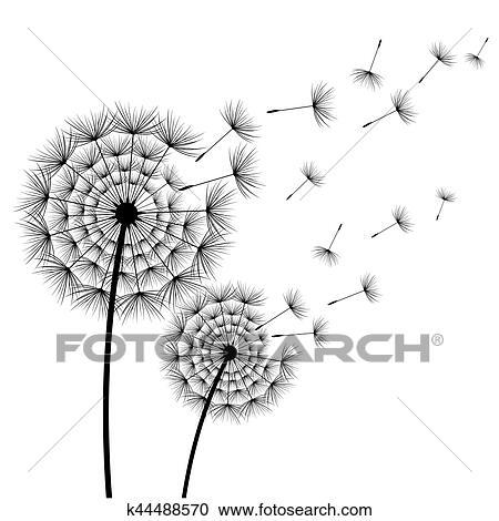 Deux Stylise Fleurs Pissenlits Sur Blanc Clipart K44488570
