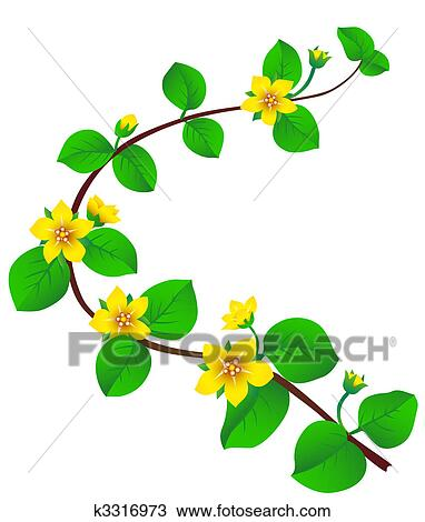 Printemps Fleur Dessin