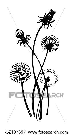 clip art of isolated blooming meadow flower form print natural