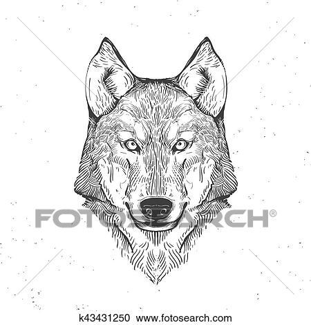 オオカミの頭部 白 手 引かれる 型 イラスト クリップアート切り張りイラスト絵画集
