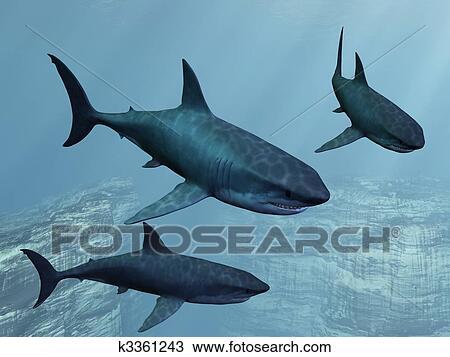 Grand requin blanc dessin k3361243 fotosearch - Dessin de grand requin blanc ...