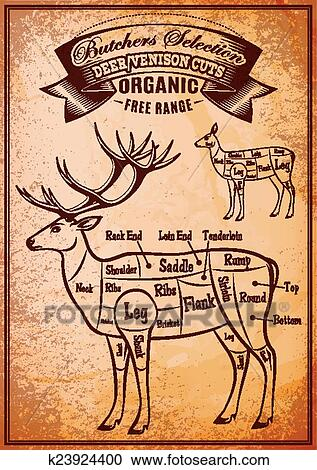 Stupendous Vector Diagram Cut Carcasses Deer Clipart K23924400 Fotosearch Wiring 101 Cajosaxxcnl