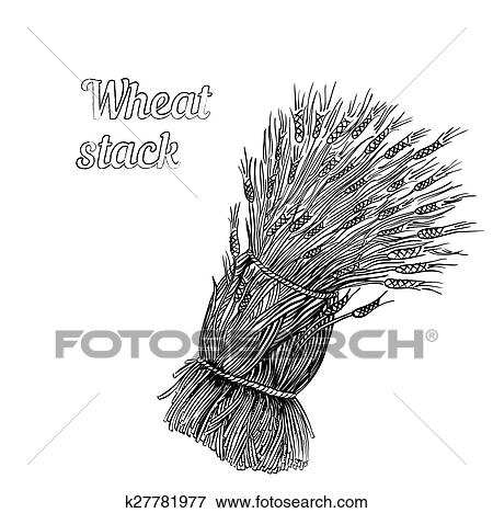 Clip Art Of Bunch Of Wheat K27781977 Search Clipart Illustration