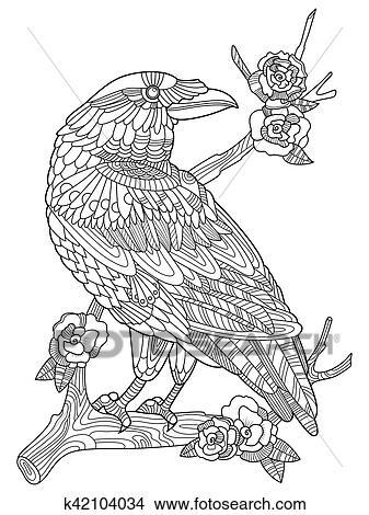 Clipart Kraehe Vogel Ausmalbilder Für Erwachsene Vektor