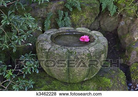 Japonaise, pierre, bassin eau Banque de Photo