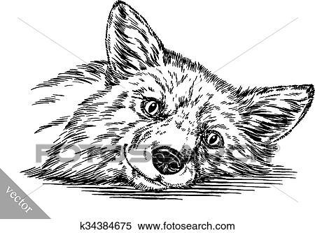 Clipart Graver Encre Dessiner Renard Illustration K34384675