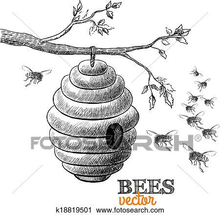 Clipart - miel, abejas, y, colmena, en, rama de árbol k18819501 ...