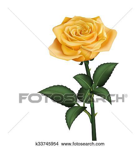 clipart r aliste rose jaune k33745954 recherchez des clip arts des illustrations des. Black Bedroom Furniture Sets. Home Design Ideas