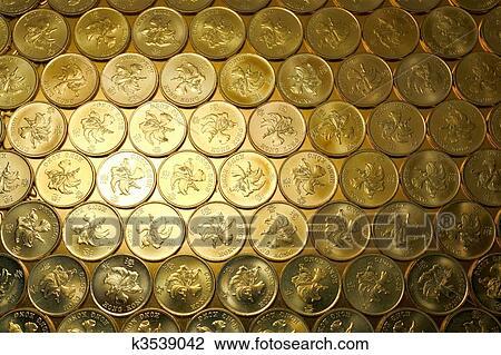 Colección De Foto Monedas Oro Modernidad Hong Kong 0 5 Pesos