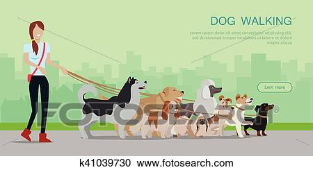 Dog Walking Banner Woman Walk With Different Dogs Clipart K41039730 Fotosearch