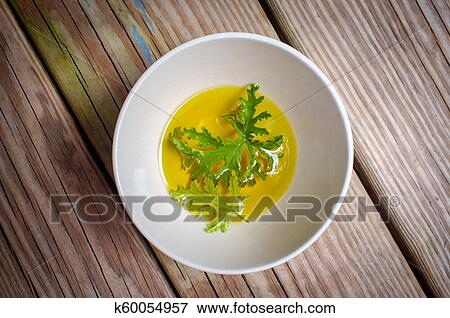 Citronella Plant Mosquito Repellant Stock Photo K60054957