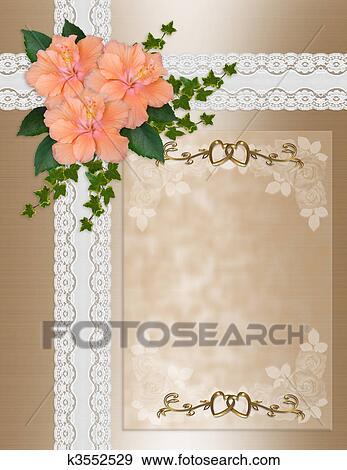 Stock Illustration Hochzeitskarten Hibiskus Spitze K3552529