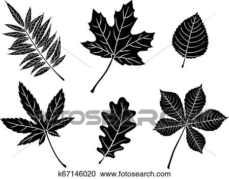 Black Fall Leaves Silhouettes Clipart K67146020 Fotosearch