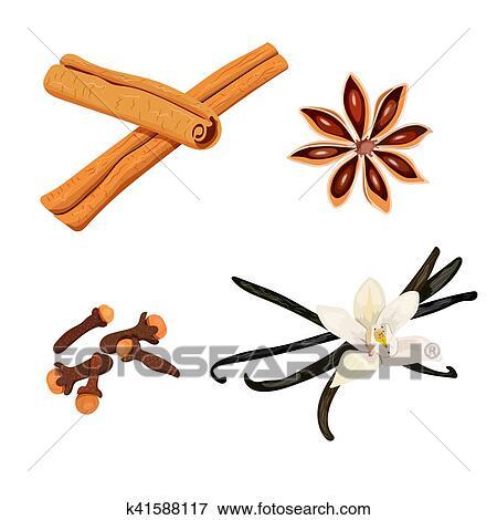 Clipart Ensemble De Spices Vanille Fleur Et Boitiers Clous