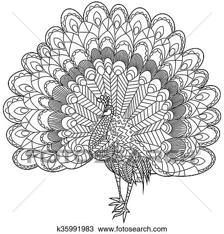 Peacock Coloring Book For Adults Vector Illustration Anti Stress Adult Zentangle Style Black And White Lines Lace Pattern
