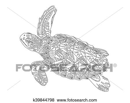 - Turtle Coloring Book For Adults Vector Clip Art K39844798 Fotosearch