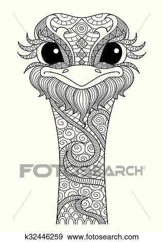 Clip Art of Ostrich coloring page k32446259 - Search Clipart ...