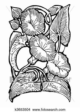 Dessins Noir Blanc Dessin Fleur K3653504 Recherche De Clip