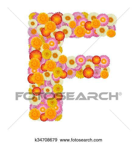 Colección de ilustraciones - f de carta, alfabeto, con, flor paja ...