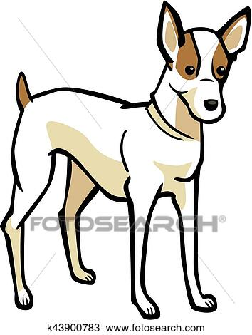 Clipart Of Jack Russell Terrier K43900783
