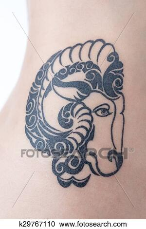 Femme Tribal Mouton Tatouage Banque D Image K29767110 Fotosearch