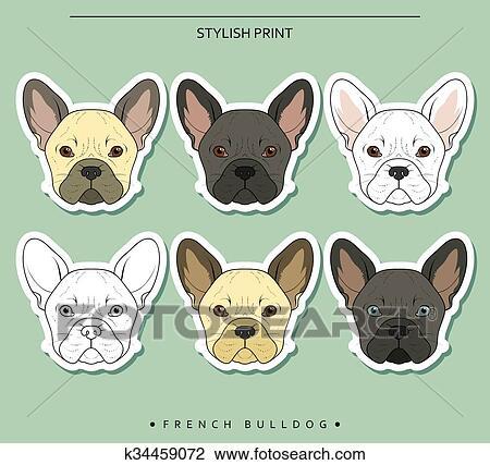 Clipart Set Mete Schizzo Bulldog Francese Differente Colorare