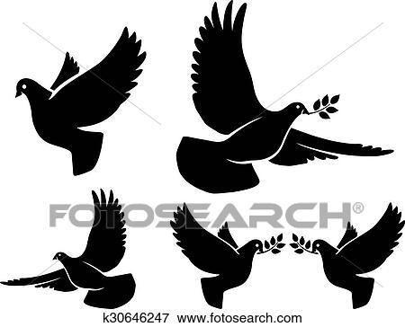 Libertad amor paz y alegria - 2 4