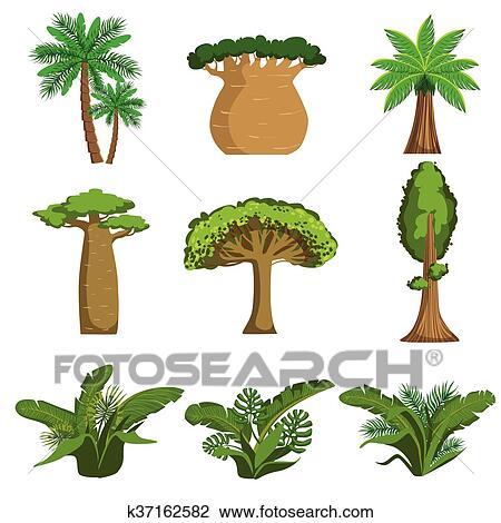 Clipart - selva, árboles, y, plantas, conjunto k37162582 - Buscar ...