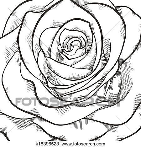 Clipart Fond A Beau Noir Blanc Rose K18396523 Recherchez Des