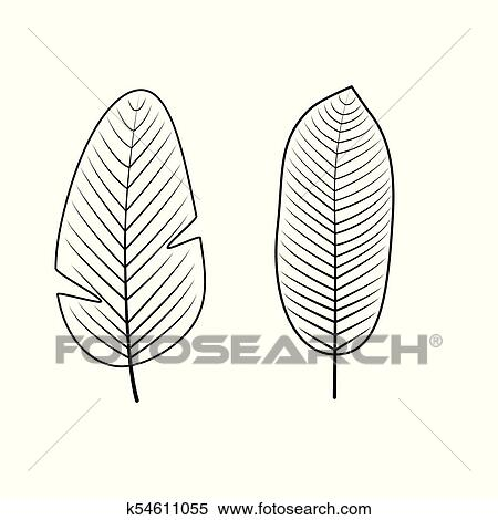 Clipart - tropical, hojas, collection., vector, illustration ...