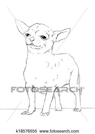 Stock Bild - chihuahua, gleichfalls, a, mutiges, kleiner hund ...