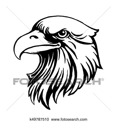 Eagle head logo Template, Hawk mascot graphic, Portrait of a bald eagle   Vector, eps8, eps10 Clipart