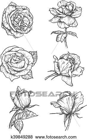 Rose Buds Icons Flower Sketch Emblems Clip Art K39849288 Fotosearch