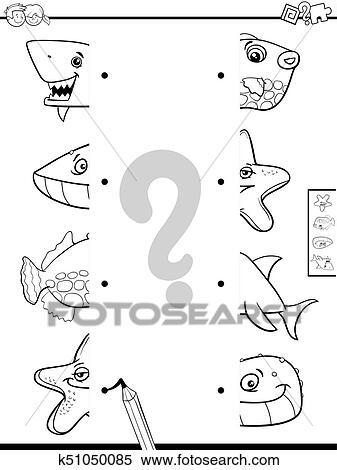 Igual Animal Mitades Libro Colorear Clipart K51050085