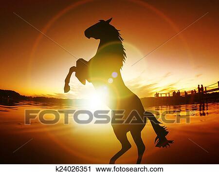 Clipart cheval silhouette libert coucher soleil nergie vie gratuite k24026351 - Clipart cheval ...