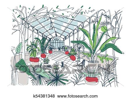 Clip Art Of Freehand Drawing Of Interior Of Botanical Garden Full Of