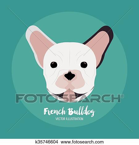 clipart buldogue francês desenho vetorial ilustração k35746604