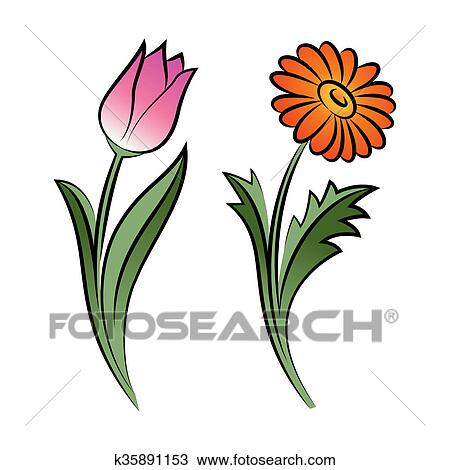 drawing of set of two outlined flowers tulip and daisy in sketch