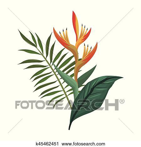 Clipart Oiseau Paradis Fleur Et Feuilles Paume K45462451