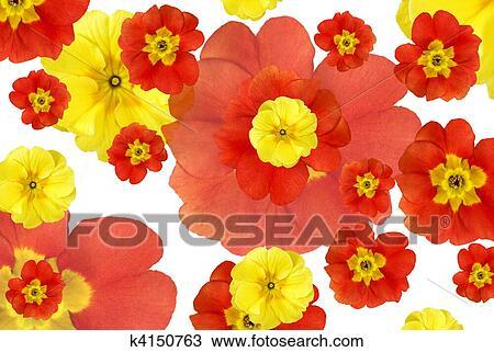 Dibujo Color Flores Plano De Fondo K4150763 Buscar Clip Art