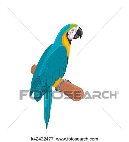 Wonderbaar Mooi, blauwe, papegaai, ara, op, branch., vogel, geïsoleerde, op GQ-04