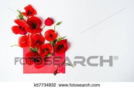 Stock photo of poppy flowers arrangement in red envelope k57734832 poppy flowers arrangement in red envelope on white background mightylinksfo