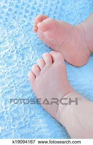 picture of baby boy feet on blue blanket k19094167 search stock