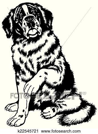 clipart of saint bernard black white k22545721 search clip art