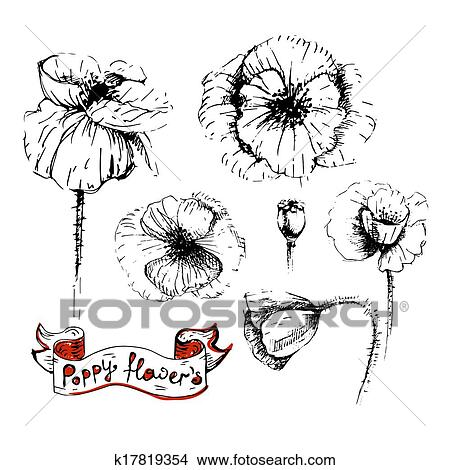 Clipart of poppy flowers sketches in different positions k17819354 clipart poppy flowers sketches in different positions fotosearch search clip art illustration mightylinksfo