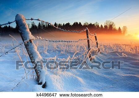 Beeld warme koude winter ondergaande zon k4496647 zoek stock