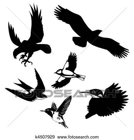 clipart vetorial ilustração de a pássaros branco fundo